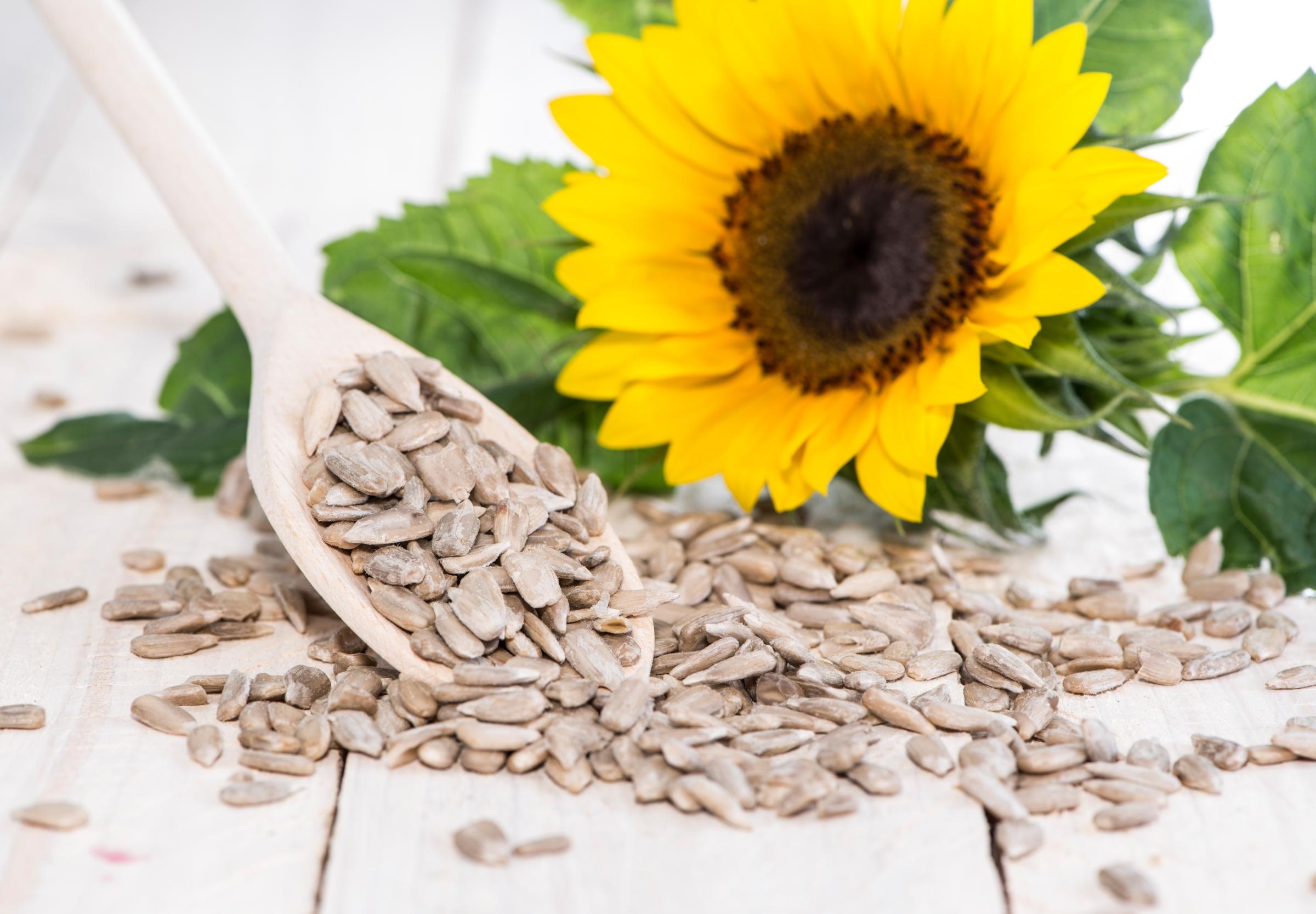 Seminţele de floarea-soarelui