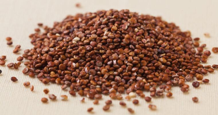 Quinoa – cereala care ne menţine tineri şi sănătoşi
